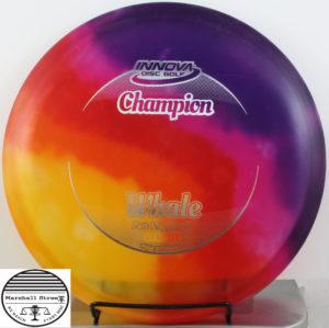 Tie-Dye Champion Whale